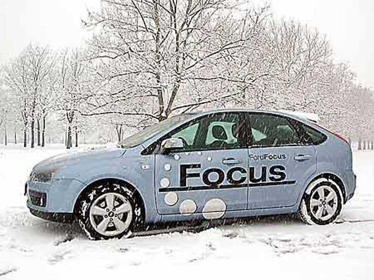 focus-a-todorovic